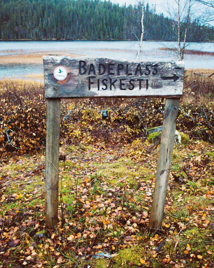 jezyk norweski